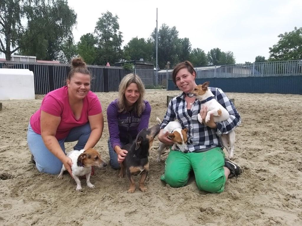 Deze drie vrijwilligers geven aandacht aan de nieuw-binnengekomen hondjes. De hondjes moesten naar het asiel wegens slechte leefomstandigheden bij hun fokker.  Lucas Versteeg © BDU Media