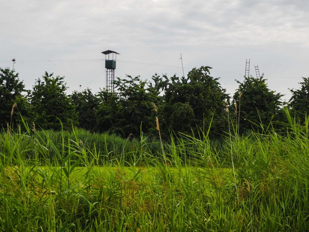 Vanuit de hut wordt er aan de touwen getrokken om vogels af te schrikken.  Tanja Vlieger © BDU media