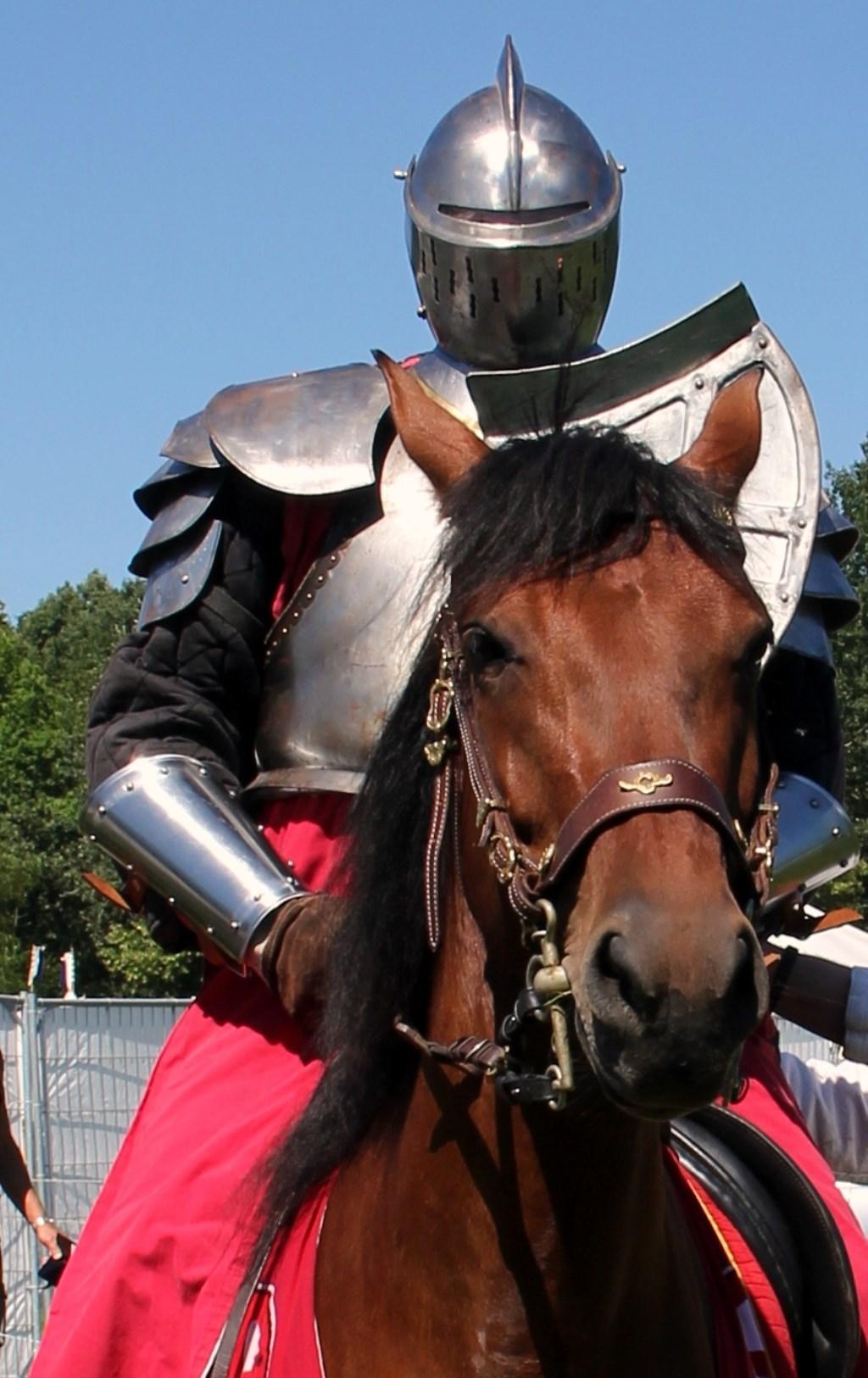 Ridder in vol ornaat en zijn briesende paard klaar voor de strijd.  Mark Zwaan  © BDU