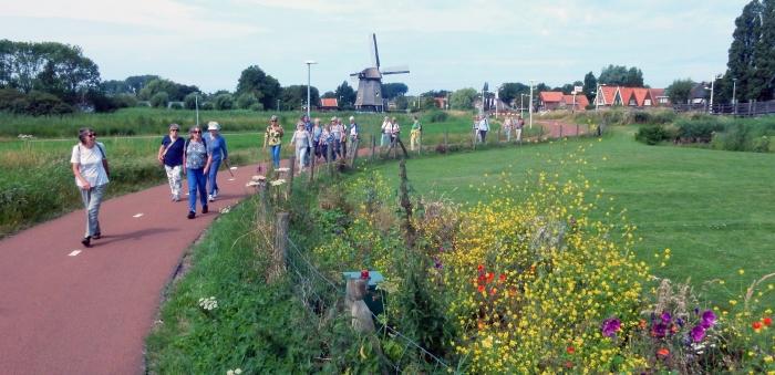 De wandeling ging door het moengebied Ouddorper-polder
