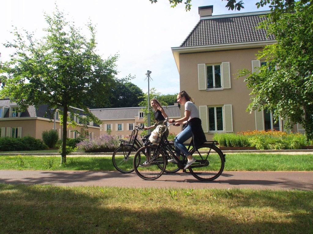 De gemeente wil paviljoen De Hoeve (rechts) verhuren aan een externe gebruiker.