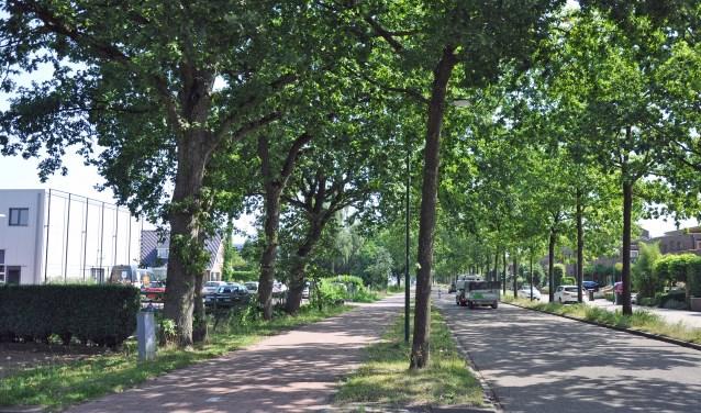 De bewoners verwachten dat Soest handhavend optreedt tegen twee autobedrijven aan de Dorresteinweg.