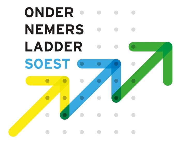 Ondernemersladder Soest heeft diverse mogelijkheden onderzocht voor een arbeidsongeschiktheidsvoorziening.
