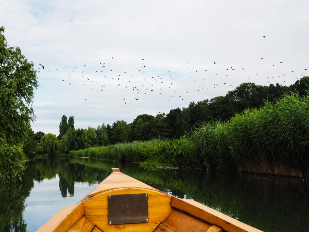 Prachtige groene oevers langs de rivier. Tanja Vlieger © BDU media