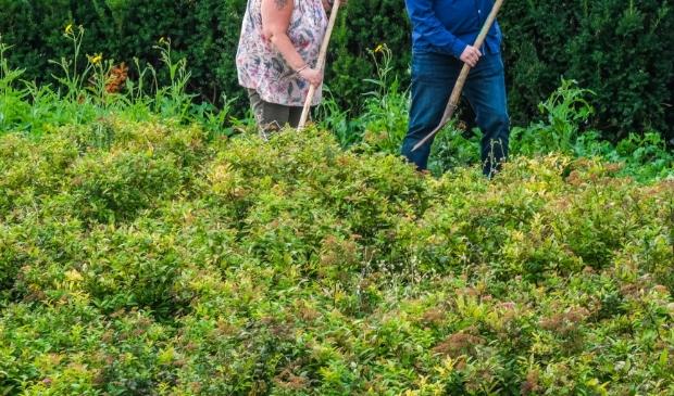 <p>De gezinnen kunnen straks schoffelen in hun gratis stuk tuin.</p>