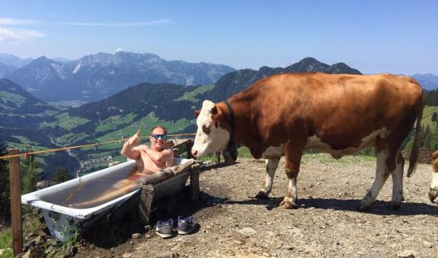Deze winnende foto is ingezonden door Vincent Zandbergen uit Voorthuizen. ,,Op de dag dat ik veertig werd, maakte m'n dochter Anouk deze mooie foto. Tijdens een mooie wandeling in de bergen van Tirol zocht ik wat verkoeling in de drinkbak van de koeien.''