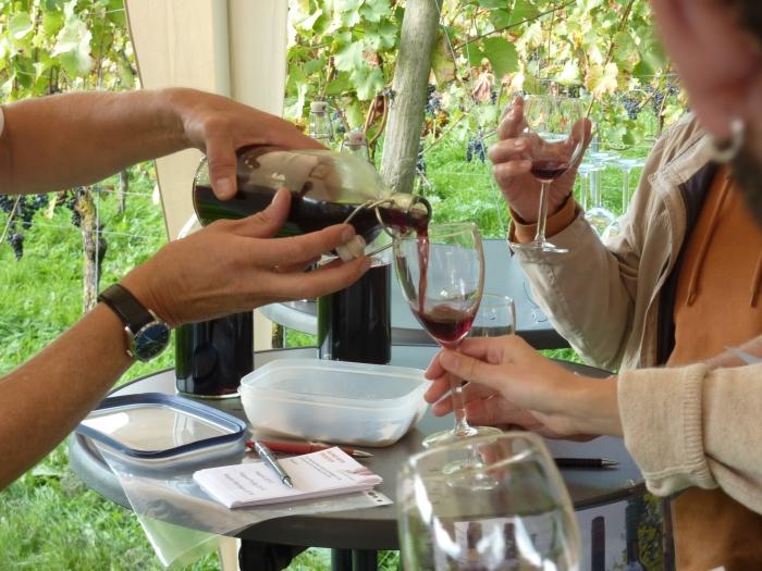 Wijnproeven op Wagenings Wijngoed