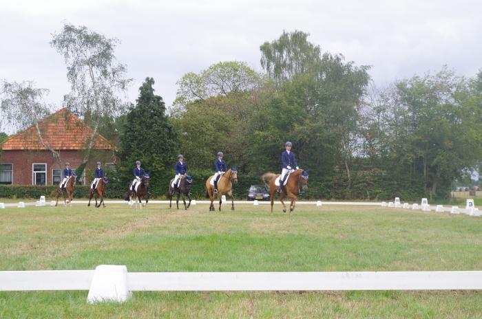 Het 6-tal tijdens hun proef op de Gelderse kampioenschappen in Zieuwent Willaerruiters © BDU media