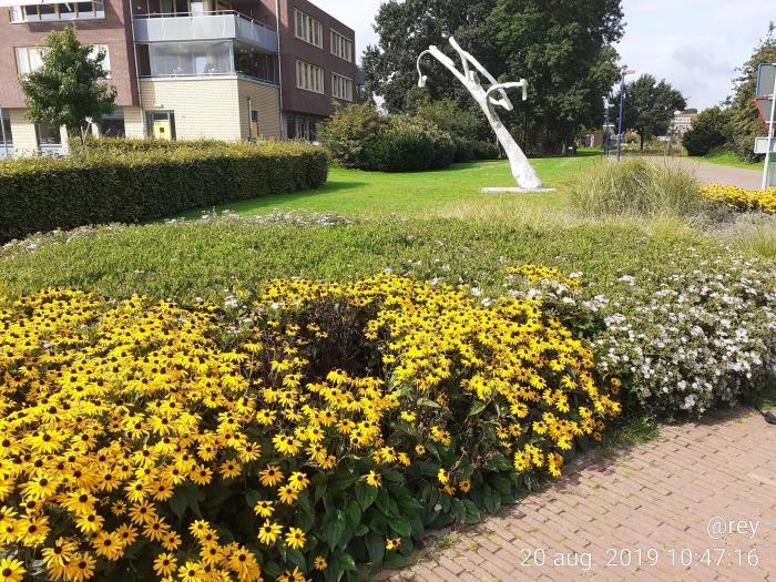 Najaars gemeente plantsoen Roel Eijgenraam © BDU media