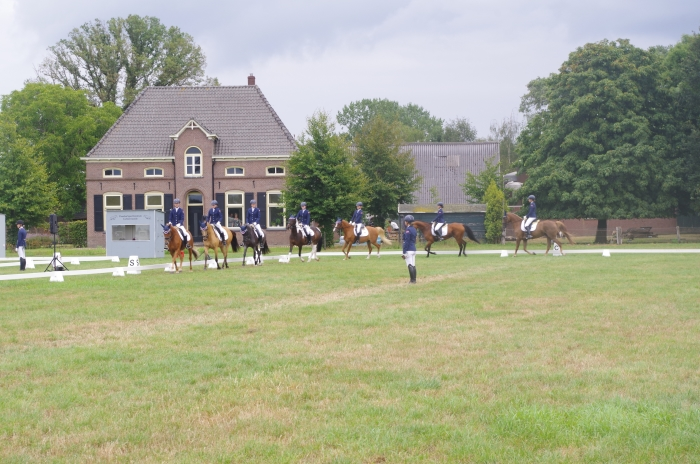 Het 6-tal tijdens hun proef op de Gelderse kampioenschappen in Zieuwent