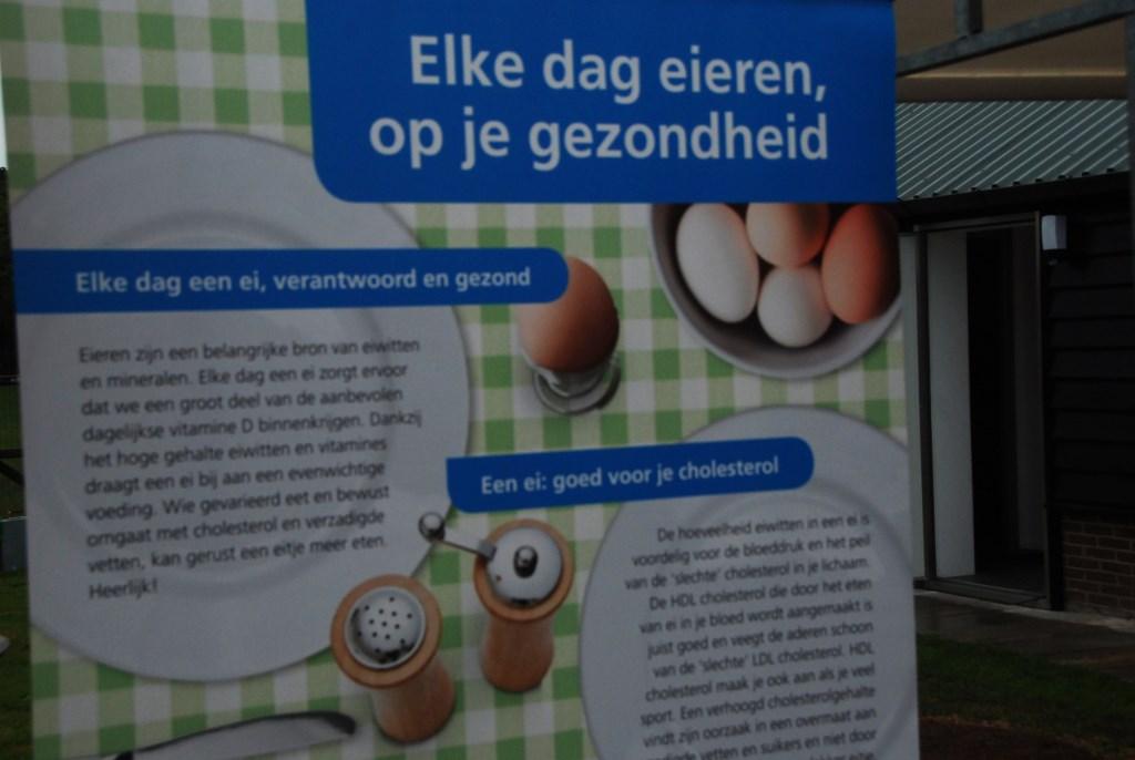 Reclame voor eieren. Adriaan Hosang © BDU media