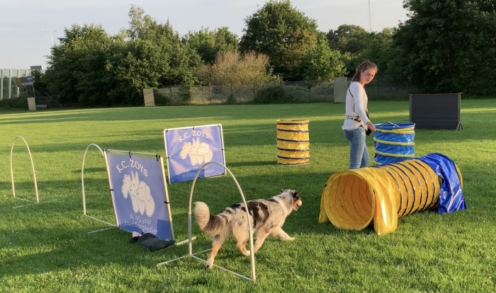 Hoopers (beginners) bij KC Zoys Veronique Wildeboer © BDU Media