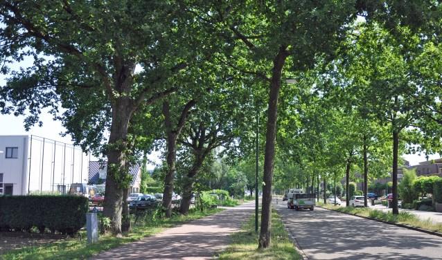 De Dorresteinweg met rechts de Sloothaak. Links de bedrijvenunits. De verhoudingen worden er niet vriendelijker op.