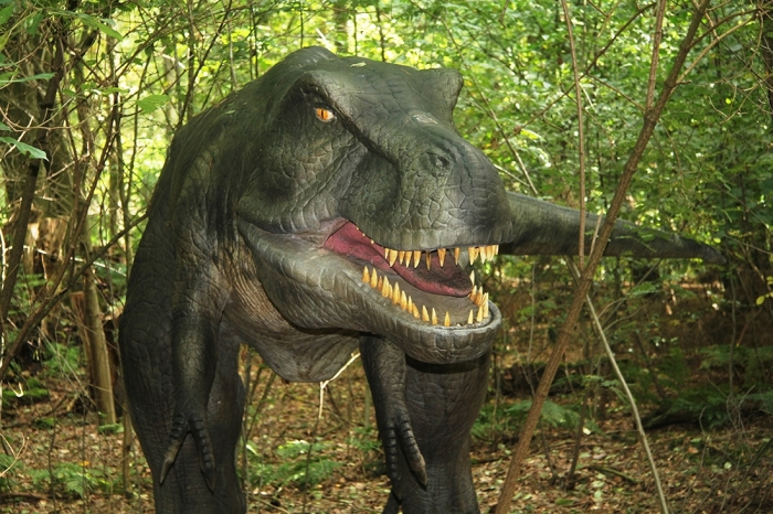 T-Rex in het Dinopark DierenPark Amersfoort © BDU media