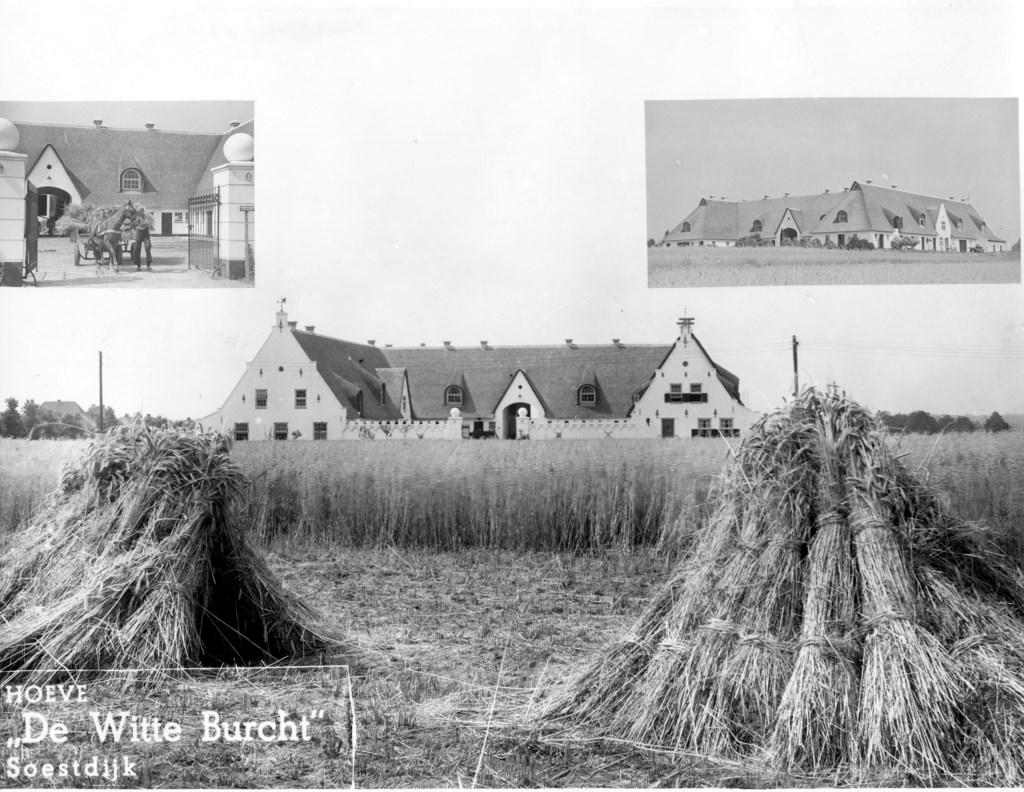 Deels reeds gebonden koren voor Hoeve De Witte Burcht aan de Soester Engweg. Eigen archief © BDU media