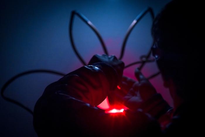 Als je de kleur van het licht aanpast, hebben vleermuizen en andere dieren er minder last van. Perro de Jong/NIOO-KNAW © BDU Media