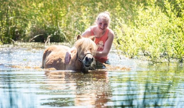 Zwemmen met Dribbel Ilse Wanner en pony Dribbel In Leusden in Den Treek.