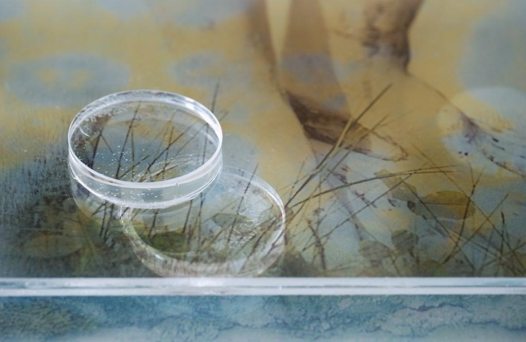 Stuk voor Stuk Carla van de Pieterman © BDU media