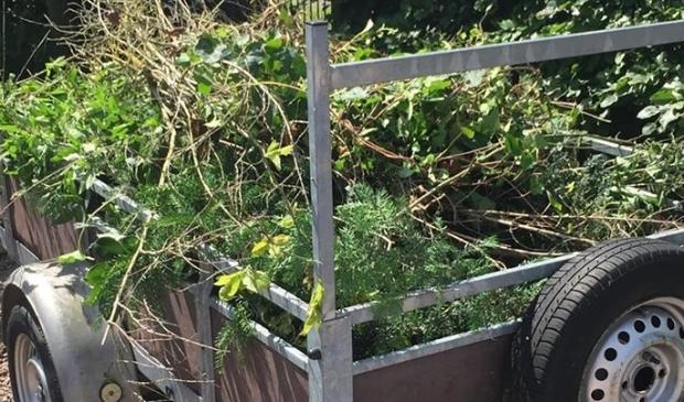 <p>Aan het einde van het jaar wordt bekeken of het poorttarief kostendekkend is voor de verwerking van grof tuinafval.&nbsp;</p>