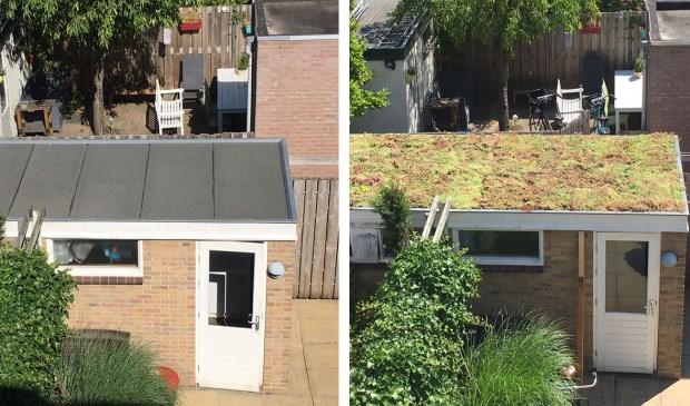 Schuur zonder en met groen dak (voor en na)
