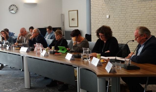 De P21 fractie tijdens het Rhijnhaeghe debat (archief)