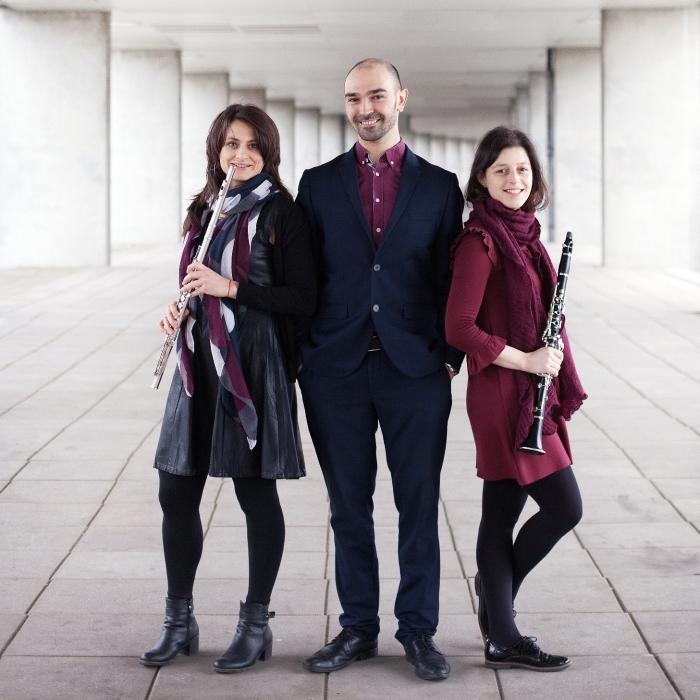 Het Scherzando Trio