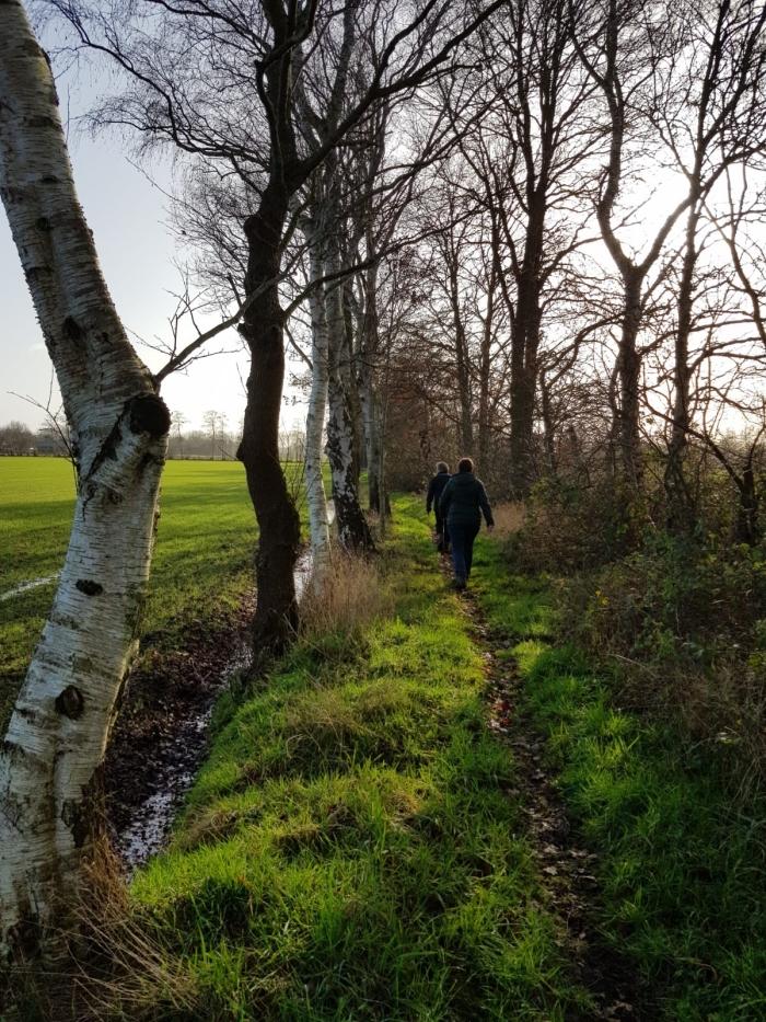Prachtige bospaden tijdens de wandeling.