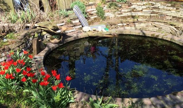 De tuinvijver in Houten.