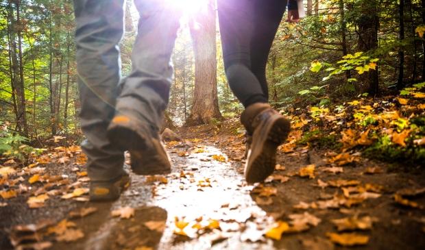 Goede wandelschoenen zijn belangrijk.