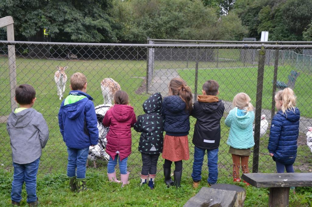 De kinderen zijn net zo nieuwsgierig als de hertjes Ali van Vemde © BDU media