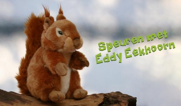 Speurtocht Speuren met Eddy Eekhoorn
