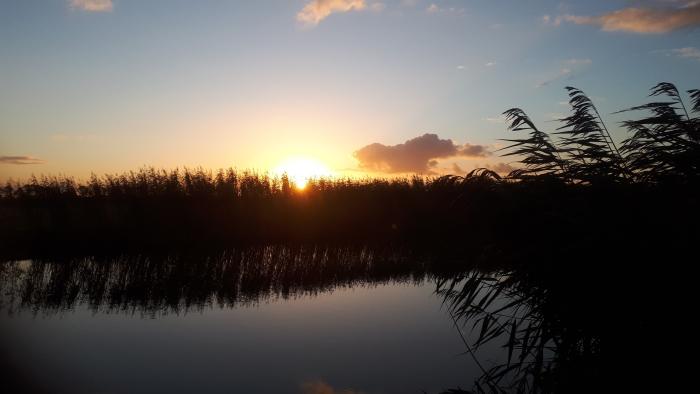 Peursumsevliet opkomende zon
