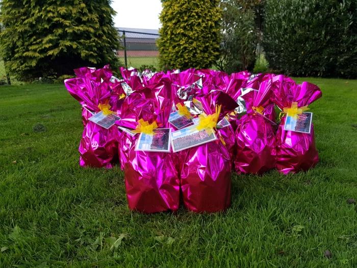 Dit zijn de grote roze eieren die door heel Nederland te vinden zijn