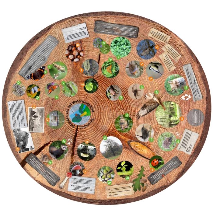 Vogels, insecten, paddenstoelen , planten, zoogdieren en historie op de natuurtafel. Kees Quaadgras © BDU media