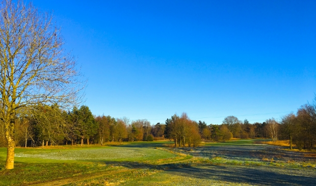 <p>Op de fraai gelegen &#39;greens&#39;, &#39;tees&#39; en &#39;fairways&#39; van golfcourt Edda Huzid in Voorthuizen wordt inmiddels 2,5 jaar niet meer gespeeld.</p>