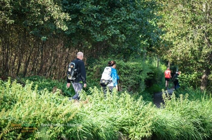 Deelnemers tijdens de Teva Halve van Haarlem Walk