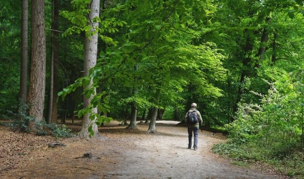 Utrechts Landschap beschermt al ruim 90 jaar natuur in de provincie Henk Ruiter © BDU media