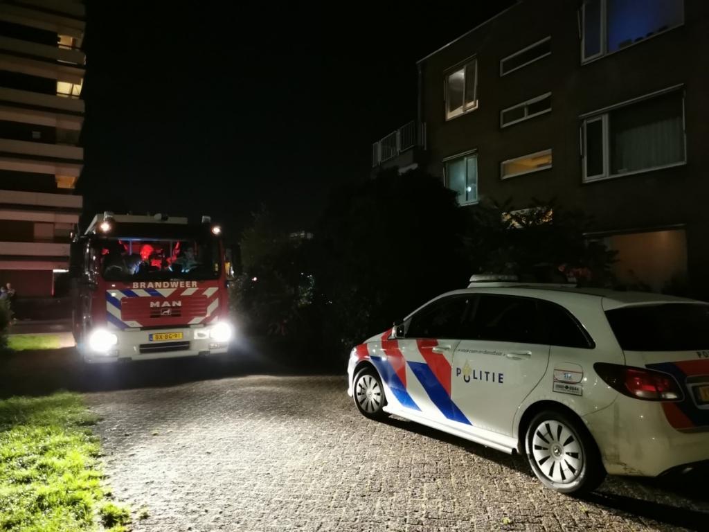 ZHZActueel / Tim Wever © BDU Media