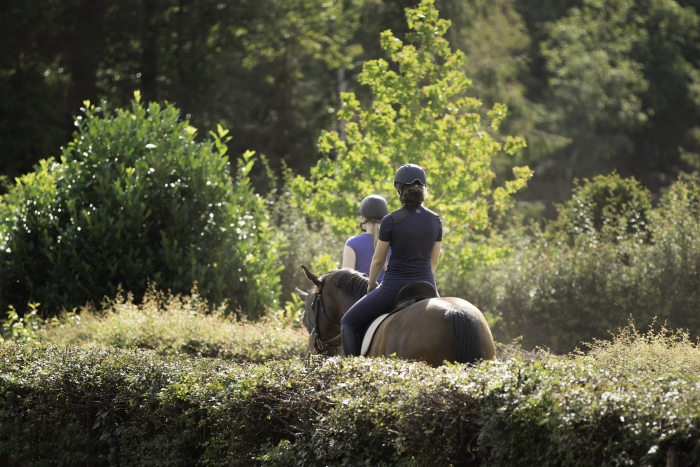Prachtig buitenrijden bij Paardenhotel Putten
