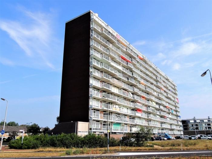 Zeewijk