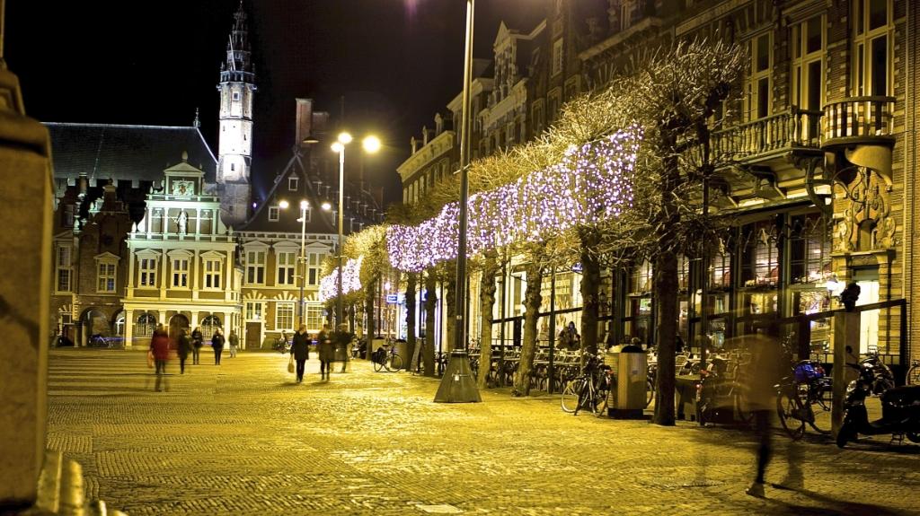 Stichting Haarlem Lichtstad © BDU media