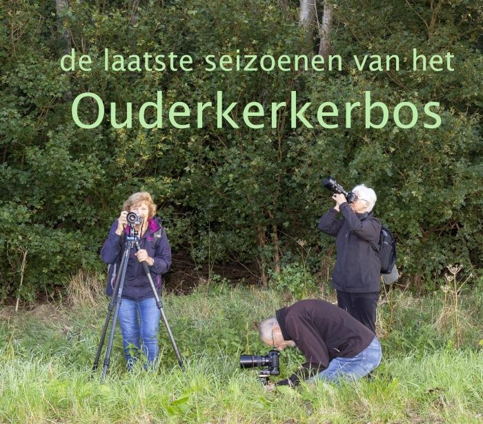 de fotografen in het Ouderkerkerbos