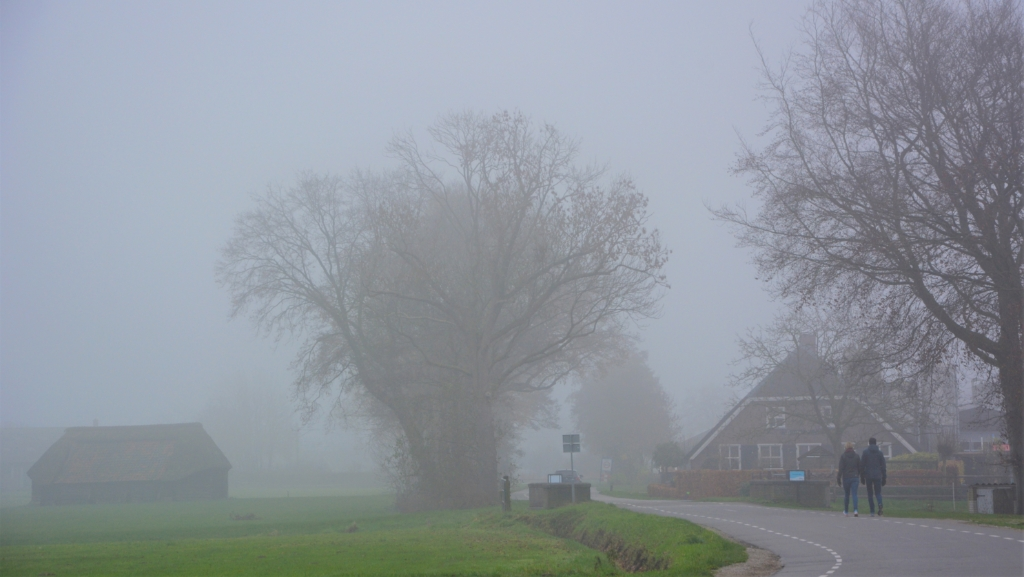 <p>Wandeling in de mist langs de Hessenweg.</p> <p>Gerwin van Luttikhuizen</p> © BDU Media