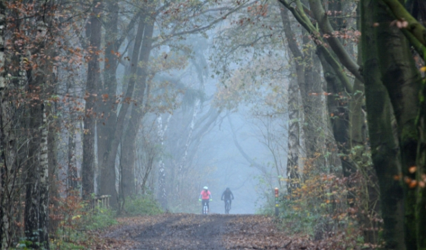 <p>Mountainbikers in de mist op Goudsberg</p>