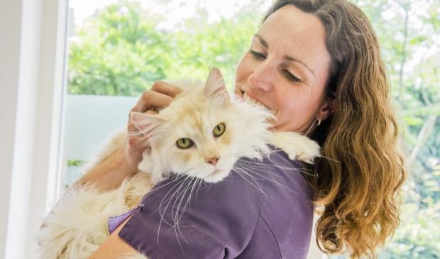 Dierenarts Kim van Landzaat van Dierenkliniek Kattenbroek met een kat