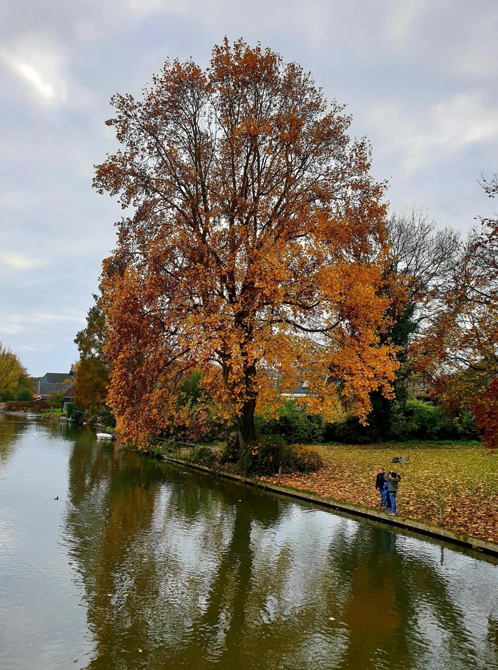Herfst in Cothen langs de Krommerijn Alie Mensink © BDU media