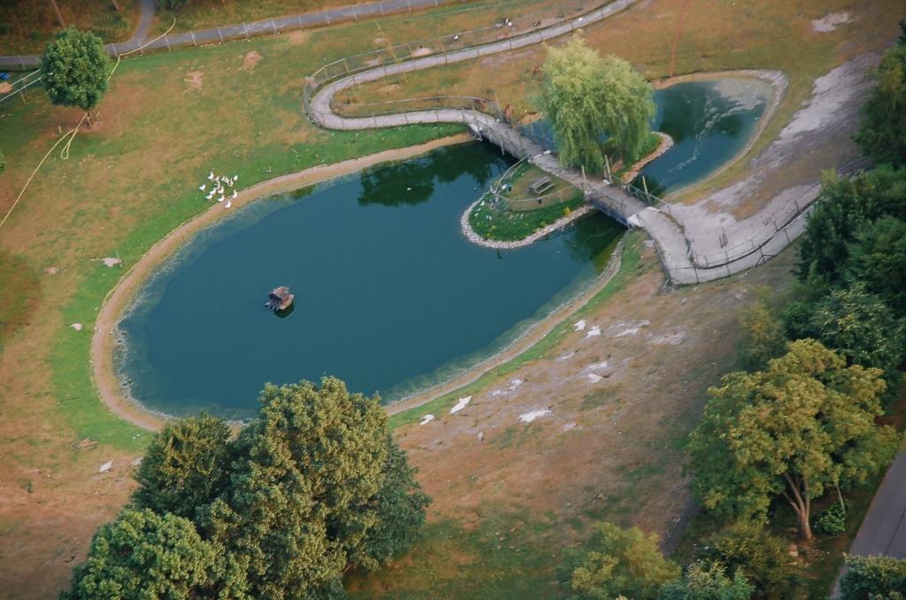 <p>Oplossing fotoquiz 31: Wekerom, Apeldoornseweg: kinderboerderij &lsquo;s Heeren Loo (Hartenberg) in 2005.&nbsp;</p> <p>Henny Jansen</p> © BDU Media
