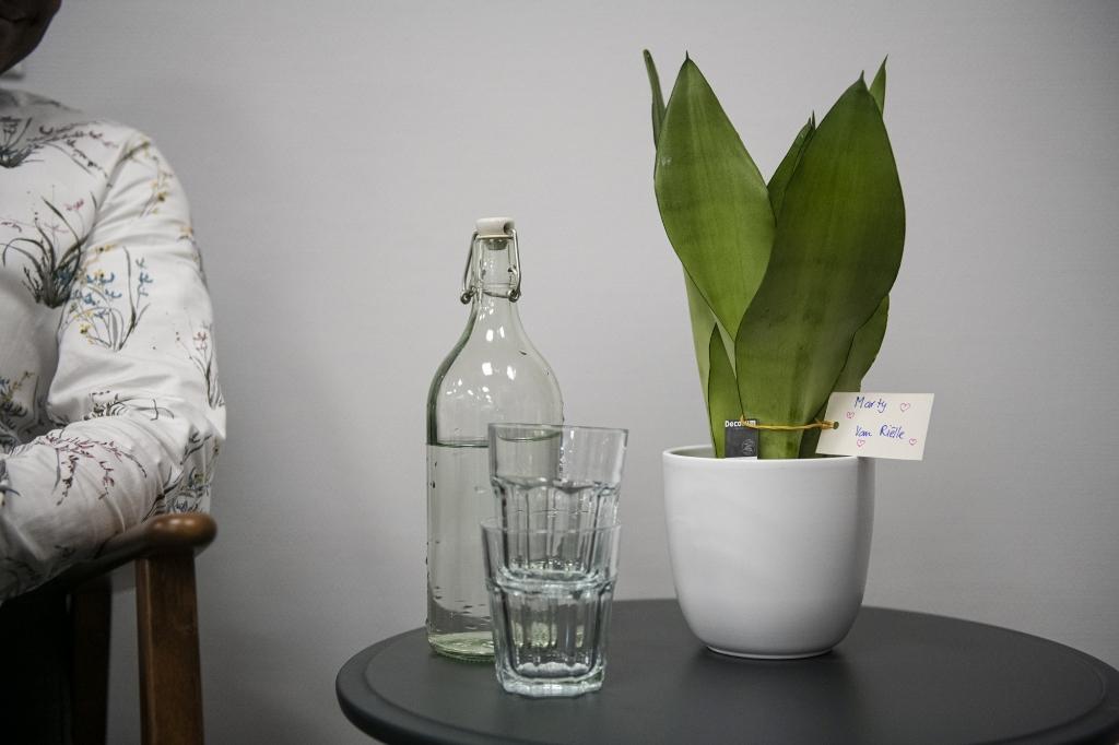 <p>,,Familie en vrienden hebben allemaal een plant gekocht en deze een naam gegeven.&quot;&nbsp;</p> Suzanne Heikoop   SHe Fotografie © BDU Media