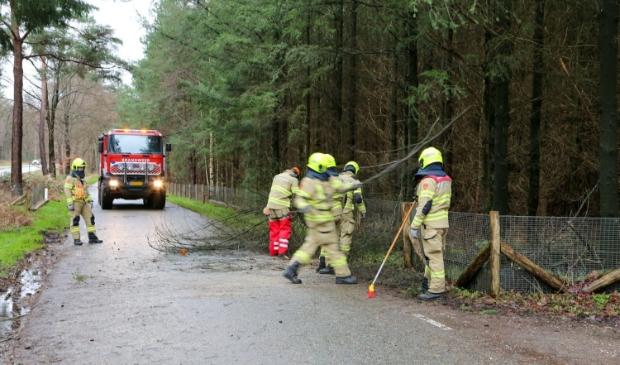 <p>Op de Apeldoornseweg viel een boom over een wildraster</p>