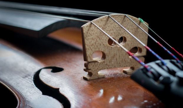 viool close-up